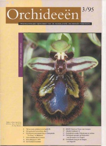 1995 - 3 - Orchideeën Vereniging Vlaanderen