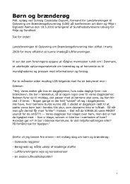Hele oplægget som PDF her. - Brænderøg