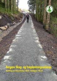 2010 - Bergen skog
