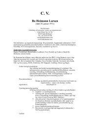 CV (PDF) - Bo Heimann