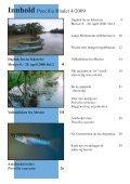 bladet - Poecilia Scandinavia - Page 3