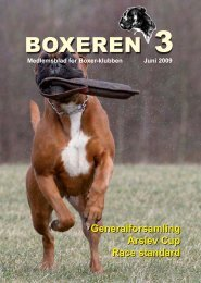 Boxer 3-2009.pmd