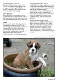 Boxer 3-2009.pmd - Page 5