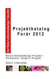 Projektkatalog - Institut for Matematik og Datalogi - Syddansk ...