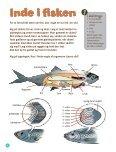 Kanon Natur – Fisk - Naturstyrelsen - Page 6