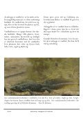 Vejledning i anlaeggelse af vandhuller_Holstebro_PDF.pub - Page 4