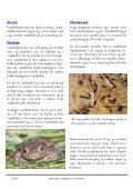 Vejledning i anlaeggelse af vandhuller_Holstebro_PDF.pub - Page 6