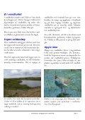 Vejledning i anlaeggelse af vandhuller_Holstebro_PDF.pub - Page 7