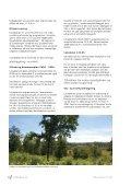 Genvedtagelse Lokalplan 12-005.indd - Lokalplan - Silkeborg - Page 6