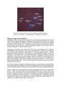 Forsvundne stjerner og kontinenter (PDF) - Holisticure - Page 5