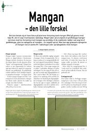 Mangan – den lille forskel - Turfgrass