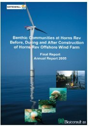 Benthic Communities at Horns Rev Before, During and ... - Vattenfall