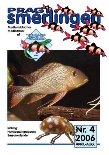 April-aug. 2006 - Vestsjællands Akvarie- og Terrarieklub