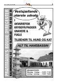 April-aug. 2006 - Vestsjællands Akvarie- og Terrarieklub - Page 5
