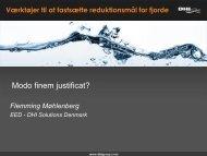 Derfor virker ålegræs ikke som indikator i vandmiljøet - Fl. Møhlenberg