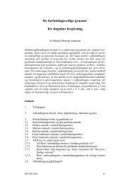 De forfatningsretlige grænser for singulær lovgivning
