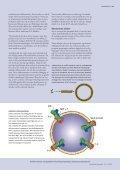 Læs Membranen sladrer om ion-pumpers funktion - Videnmasse - Page 4