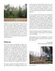 Skovdyrkeren - Skovdyrkerforeningen - Page 5