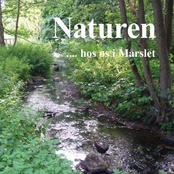 Naturen .... hos os i Mårslet