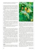 Bärbuskar (pdf) - Fobo - Page 3