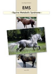 Equine Metabolic Syndrome - St. Hippolyt