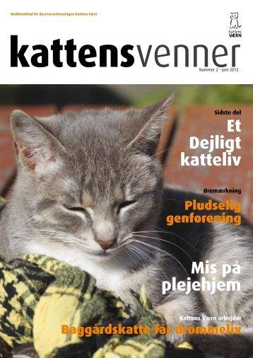 Mis på plejehjem Et Dejligt katteliv - Kattens Værn