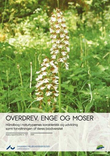 OVERDREV, ENGE OG MOSER - DCE - Nationalt Center for Miljø ...