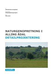 naturgenopretning i alling ådal detailprojektering - Naturstyrelsen