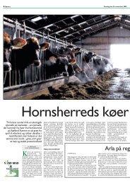 Hornsherreds køer giver god tykmælk - Opgaver