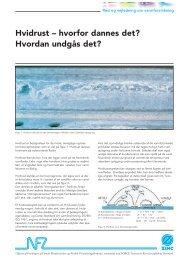 Hvidrust – hvorfor dannes det? Hvordan undgås det? - Materials.dk