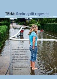 TEMA: Genbrug dit regnvand - Anlægsgartner Finn Raundahl