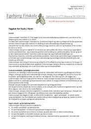 Fagplan: Fysik / Kemi - Egebjerg Friskole