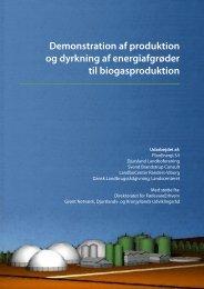 Rapporten om demonstration af produktion og ... - Djurs Bioenergi