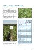 Rapporten om demonstration af produktion og ... - Djurs Bioenergi - Page 7