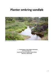1. studieprodukt - planter omkring vandløb - natur2010 - PBworks