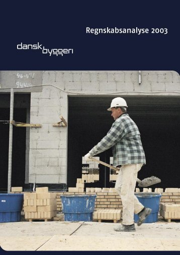 Regnskabsanalyse 2003 - Dansk Byggeri
