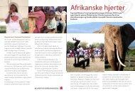 Læs mere om turen og informationsaftenerne - Hjerteforeningen
