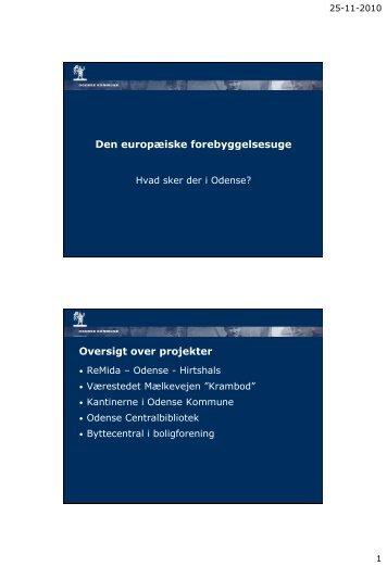 1116, Mette Kjær Hallin - Odense 251110.pdf - Dakofa