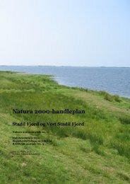 Natura 2000-handleplan - Ringkøbing-Skjern Kommune