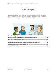 Kulturanalyse - Cabi
