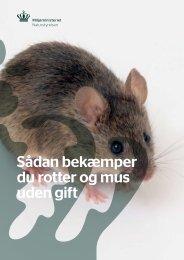Sådan bekæmper du rotter og mus uden gift - Skanderborg Kommune