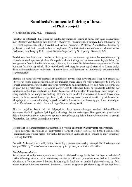 Ph. d. projekt - St. Hippolyt
