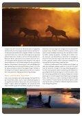 Kenya golf, safari og strand.pdf - Africa Tours - Page 3