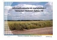 Præsentation af Vattenfall Vindkraft Bajlum P/S (PDF 3 MB)