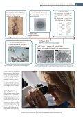 Det nye biokemiske laboratorium - Elbo - Page 2