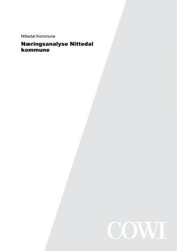 COWIs rapport (pdf)
