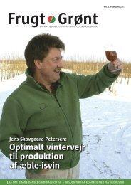 Optimalt vintervejr til produktion af æble-isvin - Gartneribladene
