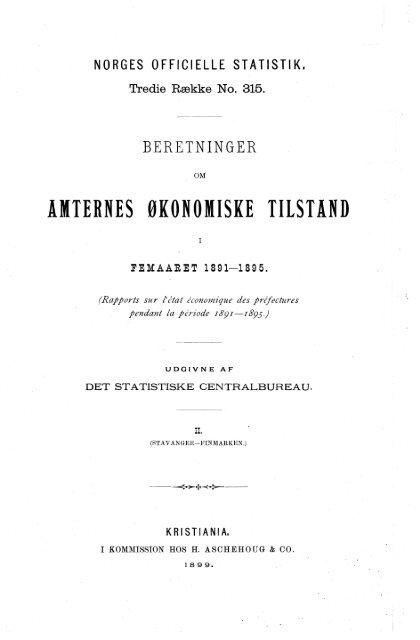 beretninger om amternes økonomiske tilstand i femaaret 1891-1895 ...
