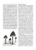 cddoog8 - Page 6