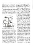 cddoog8 - Page 7